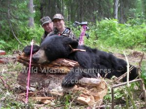 Alaska black bear bow hunt